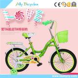 소형 자전거를 훈련하는 아이들을%s Regualr 싼 아이 자전거 또는 자전거 또는 주기