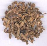 CoptisのChinensisエキスBerberineおよびBerberineの塩酸塩