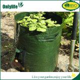Il giardino rotondo ecologico di Onlylife BSCI coltiva il sacchetto