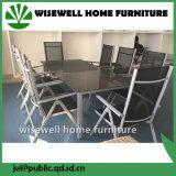Patio al aire libre de aluminio que cena los muebles con el asiento 8 (WXH-001)