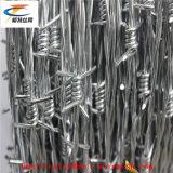 Отличная цена на заводе из колючей проволоки стальной проволоки