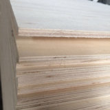 Pente de contre-plaqué de faisceau de peuplier pour l'emballage et l'usage d'emballage (9X1220X2440mm)