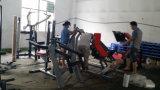 よい価格の版は適性の装置によってつけられているすくいの適性Equipmenか体操装置をロードした