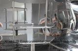 Modules d'essai normaux de l'ozone d'ASTM D 1149 pour le caoutchouc