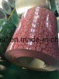 Pre покрашенный гальванизированный стальной цветок Coated PPGI катушки