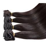3 комплектов Виргинских Малайзии органа Малайзии волос волосы кривой 8A необработанные прав Virgin волосы дешевые Малайзии органа Виргинских кривой волос