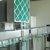 Machines à emballer remplissantes mis en bouteille par plastique de boisson carbonatée de Chine