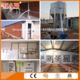 Construction moderne de la ferme de volaille avec équipement nécessaire et hangar Prefab