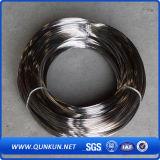 (5.0mmへの0.02 mm)ステンレス鋼ワイヤー316L