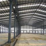 Surtidor de China del almacén de la estructura de acero para la venta (ZY237)
