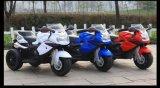 3つの車輪電池のバイク、電池のオートバイ、電気オートバイ6161