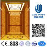 Tecnología alemana hogar residencial de Levante en ascensores de pasajeros (SPI-222)