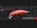 Richiamo di plastica di pesca (ciprinide agile 50)