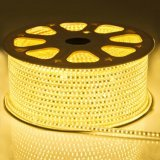5050 72LED/M 220V 14.4W DEL High Voltage Flexible Strip