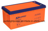 고품질 상단 판매 태양 전지 12V200ah