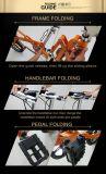 E-Bicicleta de dobramento do aço de carbono de 18 polegadas com 7 velocidades Yztdbs-5-18