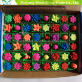 Novidade Água Grow Up Plants Mini Cactus Flower Growing Pet Plants Toys