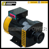 St Stc Single / Three Phase 3kw 5kw 7.5kw 8kw 10kw 15kw 20kw 30kw 40kw 50kw AC Electric Dynamo Brush Alternateur Prix