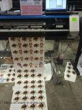 Cópia do papel de Helitin 1440dpi PVC/Vinyl/Sticker/Label/Poster/Wall e dois cortados em um plotador