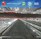 Mejor Jaula de pollo galvanizado en caliente de China estrella de plata