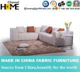Sofa européen moderne de tissu de maison de type (HC567)