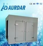 食糧のための真新しい低温貯蔵部屋