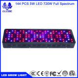 100-1000W LED Growlight 가득 차있는 스펙트럼 데이지 화환과 더 큰 점화 지역으로 꽃이 피는 UV IR 램프 실내 식물 성장 Veg