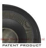 "Gw-1513na, spezieller Patent-Papier-Kegel, "" Magnet Subwoofer, Lautsprecher des Neodym-15"