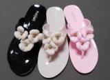 Design de sapata de mulheres bonitas e populares