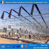 직업적인 프로젝트 열 보전 정원 인기 상품에 의하여 이용되는 온실