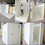 蝶番を付けられたドアが付いているPUのパネルの冷蔵室かフルーツの低温貯蔵