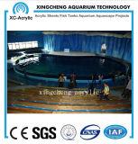 Acuario de acrílico modificado para requisitos particulares del acuario del producto de acrílico transparente del surtidor para el proyecto del acuario