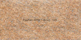 400X800mm Granit-Porzellan-dünne Wand-Fliese Xy8401h