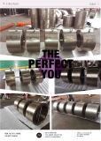 Klep van de Controle van het Wafeltje van de Plaat van de Legering van het titanium de Dubbele