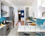 Flachgehäuse Kraftstoffregler-Küche mit GranitCountertop