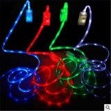 câble de caractéristiques du téléphone USB de lumière clignotante de 5V 2A DEL