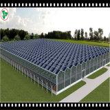 vetro fotovoltaico Tempered modellato vetro basso del comitato solare del ferro di 3.2/4mm