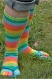 Цветастое платье нашивок для носка пальца ноги конструкции 5 малышей