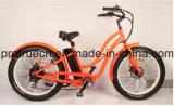Fetter Gummireifen-elektrisches Fahrrad für Strand Crusier