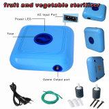 300mg/H de Zuiveringsinstallatie van het Water van de Lucht van de Generator van het ozon voor Fruit en Groenten