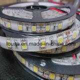 최고 광도 백색 60LEDs/M 5050의 LED 지구