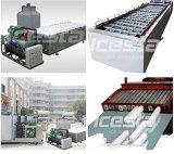 2 Tonnen/Tag integrierte Entwurfs-Eis-Block-Maschine