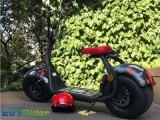 Moteur sans frottoir de 60V 1000W de scooter électrique puissant de la CEE avec la grande roue