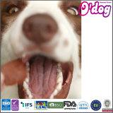BBQ van Odog de Schokkerige Spaander van de Kip van het Aroma voor de Snacks van de Hond