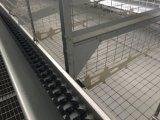 Xinguangzheng conçoit le matériel de poulet