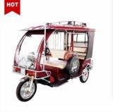 Triciclo eléctrico de tres ruedas moto, coche eléctrico