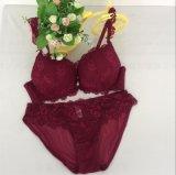 Reggiseno comodo all'ingrosso delle donne e Panty (FPY323)