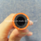 Pression de 20 barres ligne boyau de gaz naturel de 10mm x de 17mm