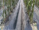 Прямая связь с розничной торговлей фабрики Китая ткани земной крышки PP черной