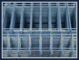 Galvanisierter Kurbelgehäuse-Belüftung beschichteter geschweißter Maschendraht-Zaun für Sicherheits-Garten-Gebäude